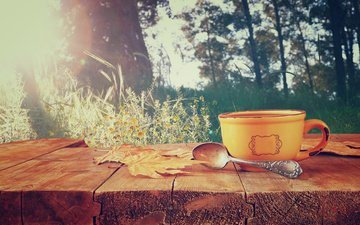 листья, осень, кофе, чашка, кубок, осен, горячая, листья