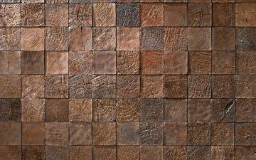 древесина, эффект, структура, образец, квадратная древесина
