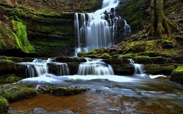 водопад, англия, каскад, северный йоркшир, йоркшир-дейлс