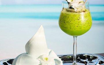 море, пляж, коктейль, плоды, киви, водопой, тропическая, парное, летнее