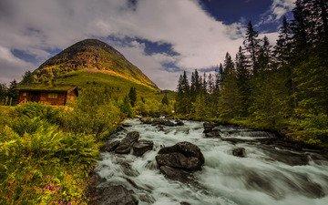 деревья, река, холм, норвегия, хижина, норвегии