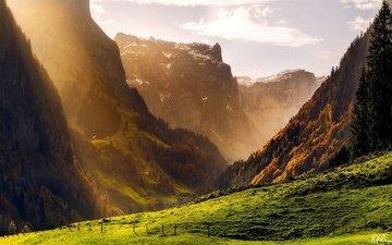 горы, обои, лес, фото, осень, швейцария, картинки, альпы