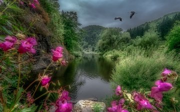 деревья, река, горы, пейзаж, австрия, журавли, river kamp