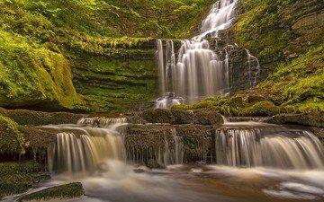 водопад, англия, каскад, йоркшир-дейлс, scaleber force falls, yorkshire dales national park