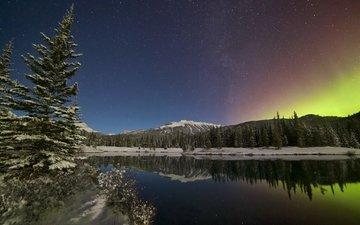 небо, деревья, озеро, горы, отражение, северное сияние, канада, альберта, провинция альберта, канадские скалистые горы, forgetmenot pond, kananaskis country, кананаскис