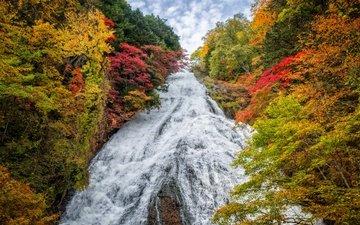 деревья, пейзаж, водопад, осень, япония, yudaki waterfall
