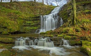 водопад, осень, англия, каскад, северный йоркшир, йоркшир-дейлс
