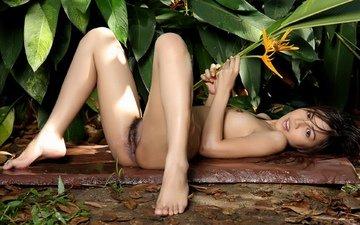брюнетка, красавица, сексуальная, азиатская