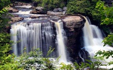 камни, зелень, листья, ручей, ветки, водопад, сша, blackwater falls state park