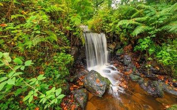 природа, камни, ручей, водопад, осень