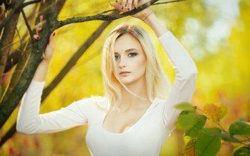 глаза, листья, девушка, блондинка, осень, губы