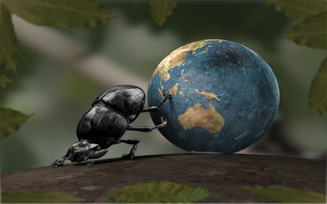 earth, ball, leaves, shuk beetle, 3d