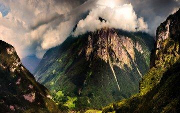 горы, лес, вид, швейцария, дома, ущелье, долина