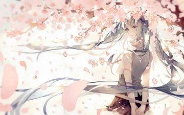 art, girl, petals, anime, vocaloid, sakura, pudding, hatsune miku