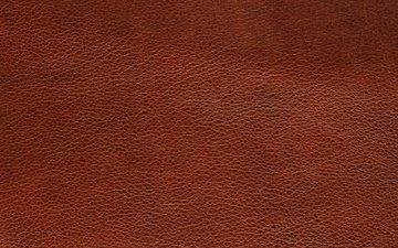 текстура, цвет, форма, кожа
