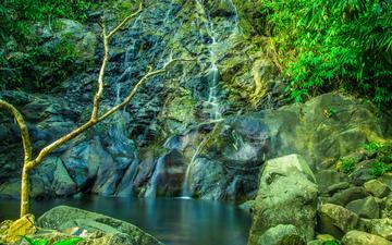 деревья, скалы, природа, камни, водопад, водоем