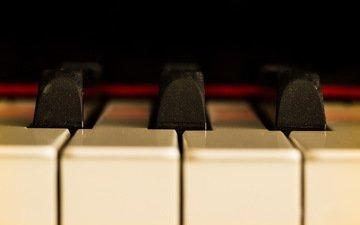 macro, music, piano