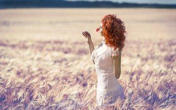 солнце, девушка, поле, лето, цветочек, рыжеволосая