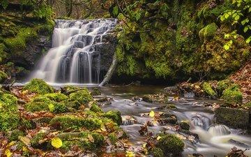 листья, водопад, осень, англия, мох, каскад, тодморден, западный йоркшир