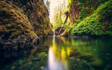 деревья, река, скалы, лес, водопад, мох, ландшафт, растительность