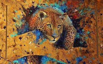 арт, леопард, зверь