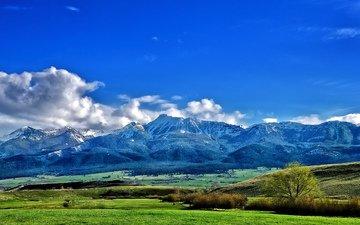 небо, трава, облака, деревья, горы, долина