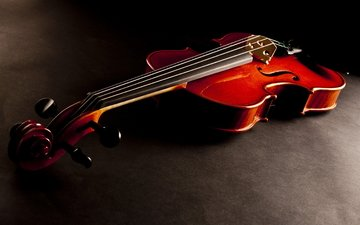 violin, music, red, wooden, stringed instrument