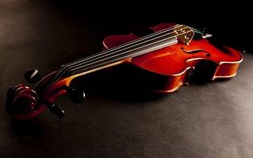 скрипка, музыка, красный, деревянная, струнный инструмент
