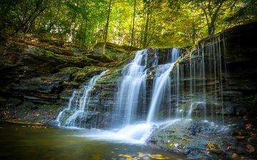 forest, waterfall, autumn, pa, cascade