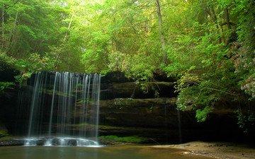 деревья, скалы, природа, лес, водопад