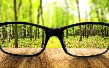 земля, лес, очки, бокалы, увеличение, землей