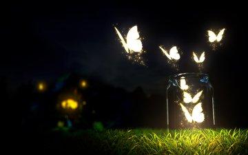 небо, трава, ночь, земля, природа, макро, бабочки, бутылки, красивая, блюр, на природе, красива, ноч, butterflies, бутылек, dark sky, светящиеся, молотый