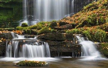 камни, листья, водопад, осень, мох, северный йоркшир, йоркшир-дейлс, сетл