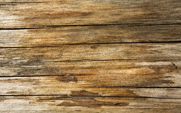 дерево, стена, дерева, лак, столики, varnish