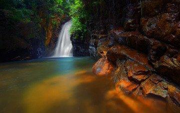 деревья, скалы, лес, ручей, водопад, поток