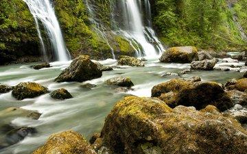 деревья, река, камни, лес, водопад