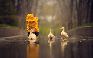 вода, птицы, ребенок, малыш, лужа, птенцы, гусята