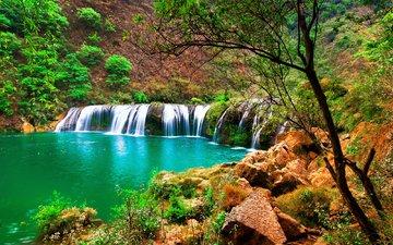деревья, река, камни, склон, водопад, поток