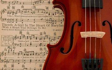 notes, violin, music
