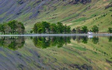 деревья, озеро, склон, дом