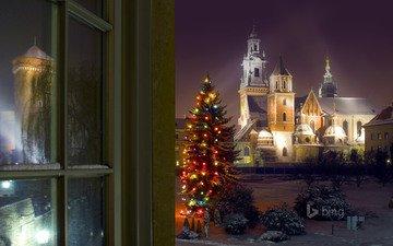tree, castle, christmas, poland, bing, krakow, wawel castle