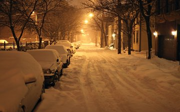 дорога, ночь, деревья, фонари, снег, зима, город, дома, авто, сша, нью-йорк, ноч, олбани, нью - йорк