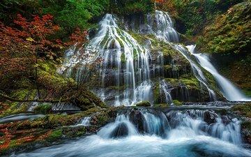 вода, камни, водопад, осень, поток, мох