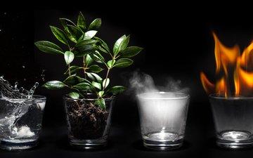 вода, земля, огонь, воздух, 4 элемента, стеклянные чашки