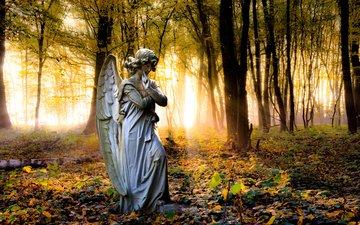 деревья, парк, осень, ангел, статуя