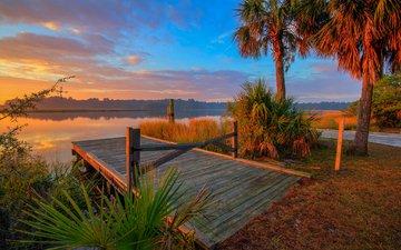 небо, вечер, озеро, мостик, пальма