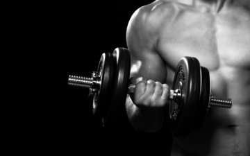 hand, male, man, fitness, gym, arms, dumbbell