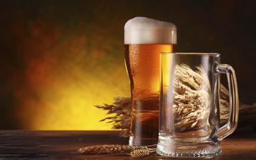 стекло, пиво, ячмень, алкогольные напитки, a beverage alcoholic, cтекло