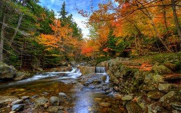 деревья, камни, лес, ручей, водопад, осень