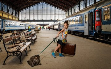 cat, girl, train, suitcase, cars, the platform